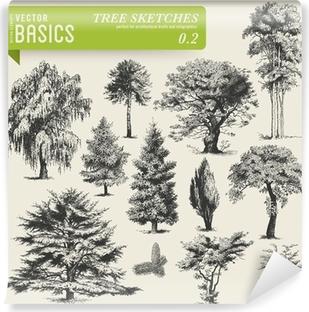 vector basics: tree sketches 2 Vinyl Wall Mural
