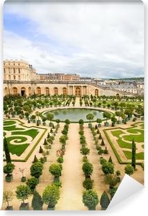 Versailles Garden, France Vinyl Wall Mural