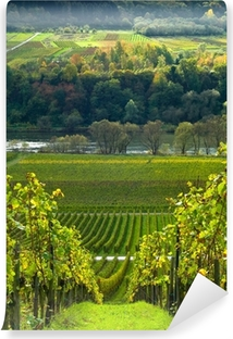 vineyards and forest Vinyl Wall Mural