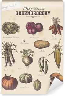 vintage greengrocer's placard with different vegetables (2) Vinyl Wall Mural
