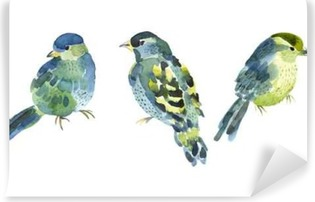 Watercolor bird collection for your design. Vinyl Wall Mural