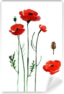 watercolor poppy, hand painted draw Vinyl Wall Mural