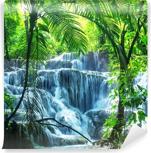 Waterfall in Mexico Vinyl Wall Mural