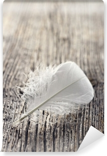 White feather Vinyl Wall Mural