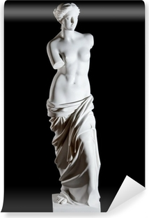 "White marble classic statue ""Aphrodite of Milos"" isolated Vinyl Wall Mural"