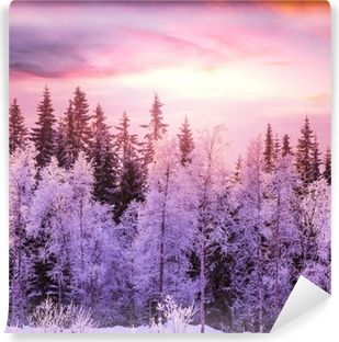 Winter forest Vinyl Wall Mural