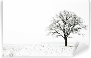 winter lonelyness Vinyl Wall Mural