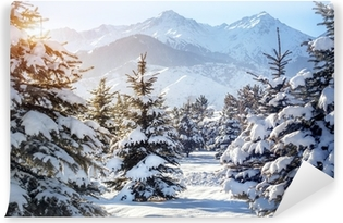 Winter mountain scenery Vinyl Wall Mural