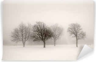 Winter trees in fog Vinyl Wall Mural