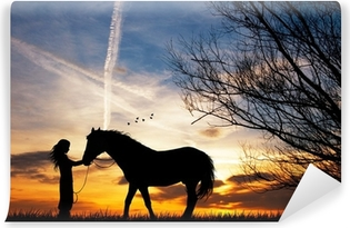 woman and horse Vinyl Wall Mural
