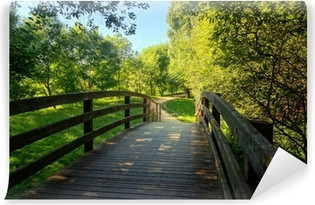 wooden bridge on park Vinyl Wall Mural