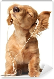 Young puppy listening to music on a head set. Vinyl Wall Mural