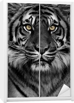 Tiger eyes Wardrobe Sticker