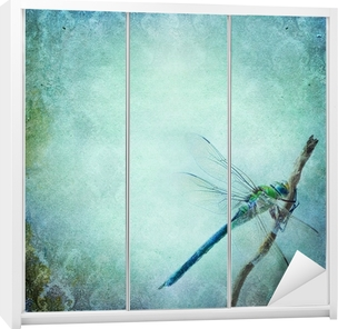 Vintage shabby chic background with dragonfly Wardrobe Sticker