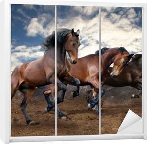 wild jump bay horses Wardrobe Sticker