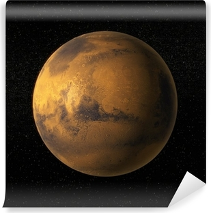 A view of planet Mars Washable Wall Mural