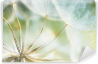 abstract dandelion flower detail background, closeup with soft f Washable Wall Mural