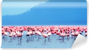 African flamingos Washable Wall Mural
