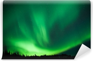Boreal forest taiga Northern Lights substorm swirl Washable Wall Mural
