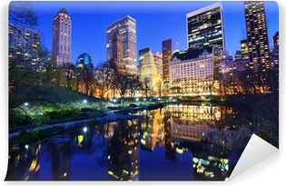 Central Park at Night in New York City Washable Wall Mural