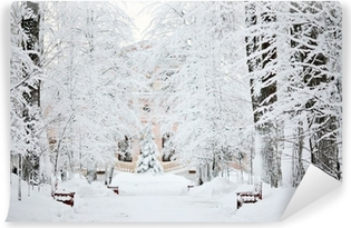 cold winter forest landscape snow Washable Wall Mural