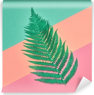 Floral Leaves Fashion Concept. Fern Tropical Green Leaf. Vivid Design. Art Gallery. Creative Bright Color. Minimal Style. Summer fashionable Background. Flat lay Washable Wall Mural