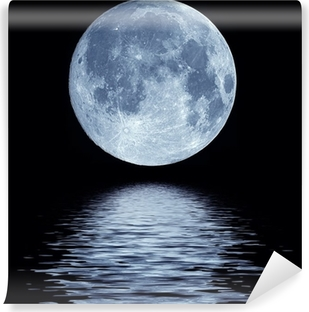 Full moon over water Washable Wall Mural