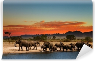 Herd of elephants in african savanna Washable Wall Mural