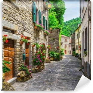 Italian street in a small provincial town of Tuscan Washable Wall Mural