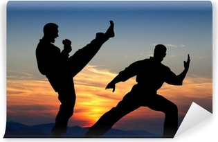 Martial art Washable Wall Mural