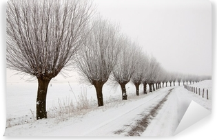 Misty winter landscape in the Netherlands with a row of pollard Washable Wall Mural