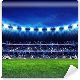 modern football stadium with fans in the stands Washable Wall Mural