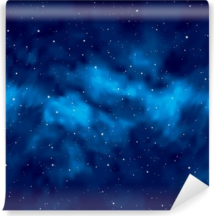 Night sky with stars Washable Wall Mural