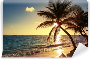 Palm tree on the tropical beach Washable Wall Mural