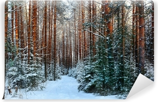 pine forest, winter, snow Washable Wall Mural
