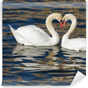 Romantic swans in spring. Washable Wall Mural