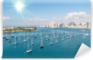 San Diego skyline and Waterfront Washable Wall Mural