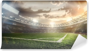 Sport Backgrounds. Soccer stadium. Washable Wall Mural