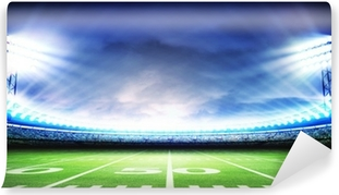 stadium american Washable Wall Mural