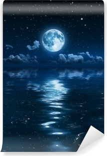 super moon and clouds in the night on sea Washable Wall Mural
