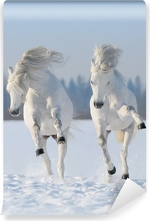 Two galloping snow-white horses Washable Wall Mural