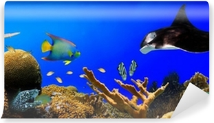 Underwater tropical reef panorama Washable Wall Mural