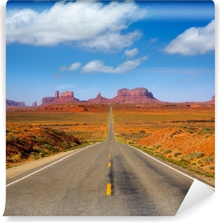 View from US 163 Scenic road to Monument Valley Utah Washable Wall Mural