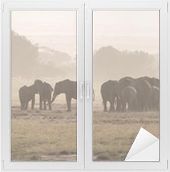 Elephants, Amboseli National Park Window & Glass Sticker