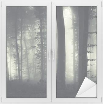 evening light in a dark misty forest Window & Glass Sticker