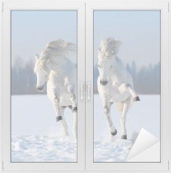 Two galloping snow-white horses Window & Glass Sticker