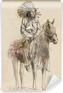 Yıkanabilir Duvar Resmi Bir at üzerinde oturan Hint baş - El vektör içine çekme