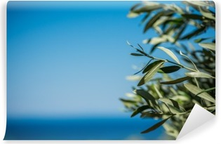 Yıkanabilir Duvar Resmi Genç yeşil zeytin dalları asmak