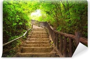 Yıkanabilir Duvar Resmi Orman merdiven, Kanchanburi, Tayland