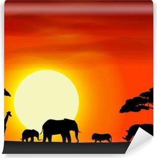 Zelfklevend Fotobehang Afrika safari landschap achtergrond